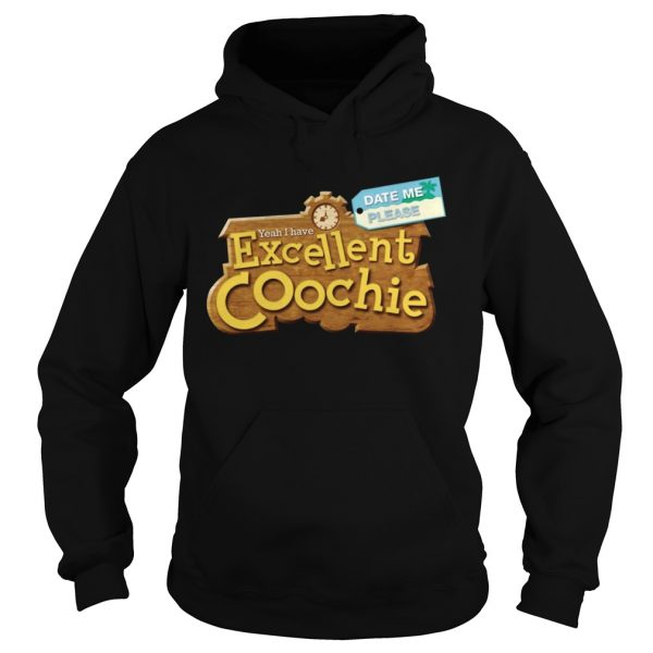 Yeah I Have Excellent Coochie Date Me Please  Hoodie