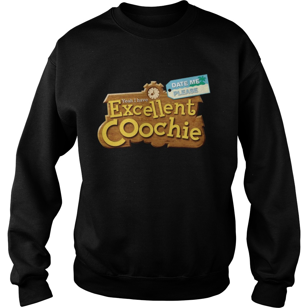 Yeah I Have Excellent Coochie Date Me Please  Sweatshirt