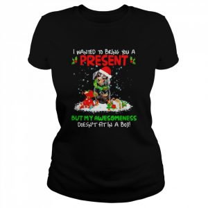 Santa Dachshund I Wanted Bring You A Present But My Awesomeness Doesn't Fit In A Box Christmas  Classic Women's T-shirt