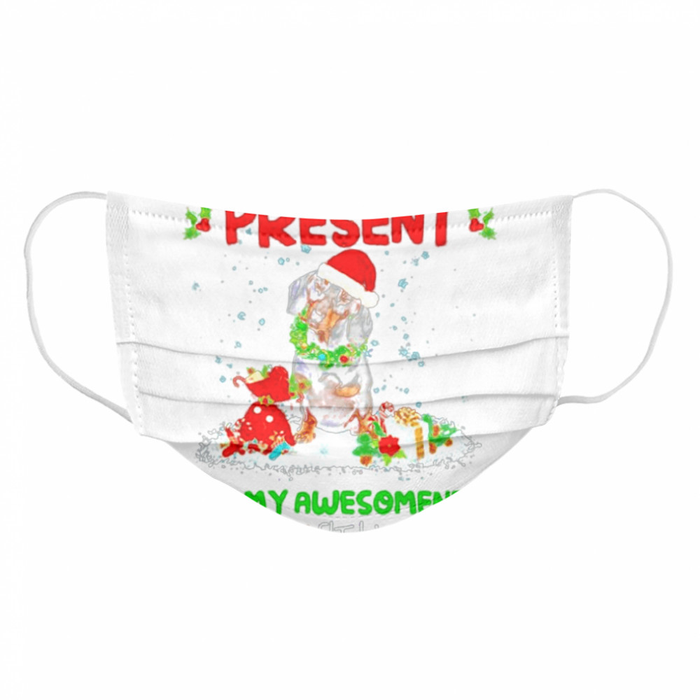 Santa Dachshund I Wanted Bring You A Present But My Awesomeness Doesn't Fit In A Box Christmas  Cloth Face Mask