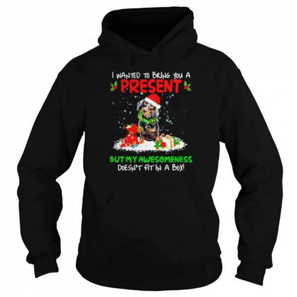 Santa Dachshund I Wanted Bring You A Present But My Awesomeness Doesn't Fit In A Box Christmas  Unisex Hoodie